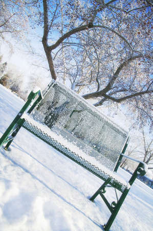imaginor: A bench alone in a park in winter Stock Photo