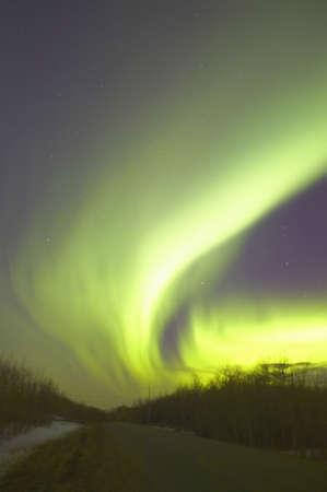 carson ganci: Northern lights,Alberta Canada Stock Photo