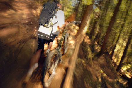 A mountain biker Stock Photo - 6213944