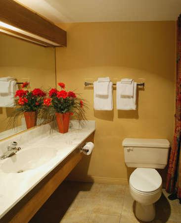 bathroom mirror: A washroom in a hotel