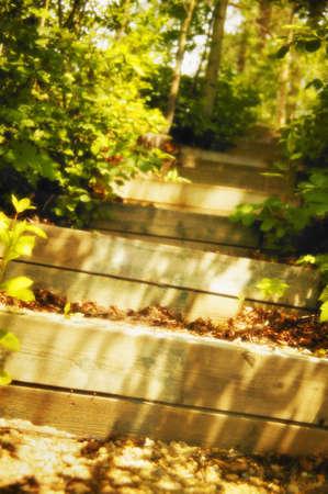 屋外の階段 写真素材