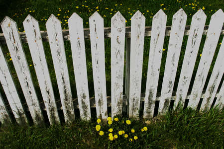 A white picket fence photo