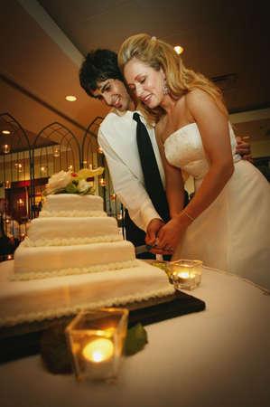 Cutting the cake Stock Photo - 6214481