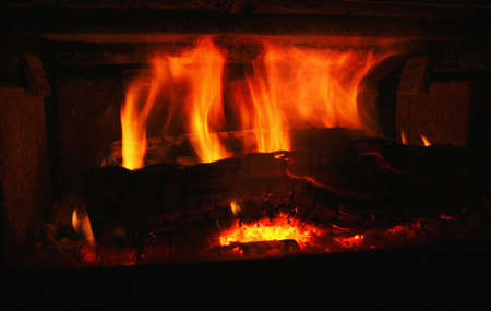 outdoor fireplace: Burning fire Stock Photo