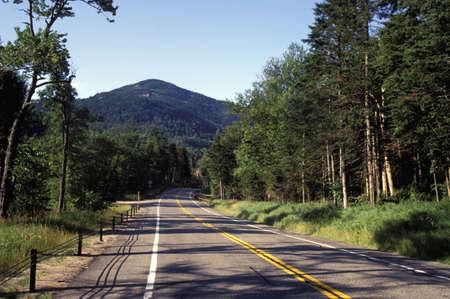chapman: Roadway