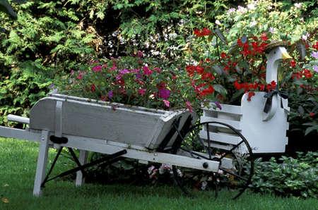 planter: Pretty garden and planters