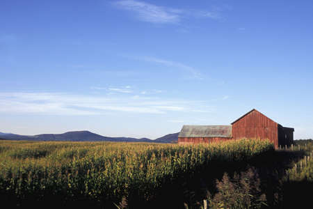 wide open spaces: Wide open spaces of farmland