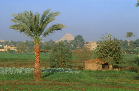 djoser: Nile River Valley and Step Pyramid of Djoser