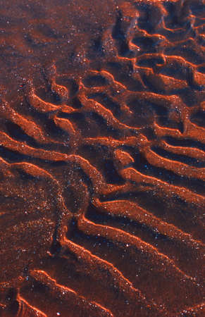gritty: Undulating sand