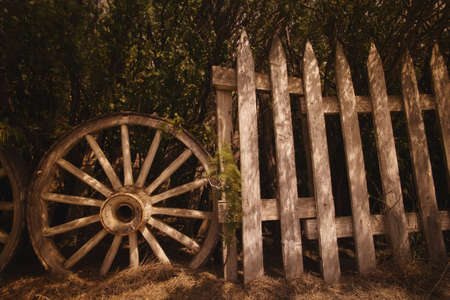 Cartwheel and wooden fence photo
