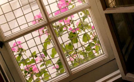 tanasiuk: Inside old fashioned window Stock Photo