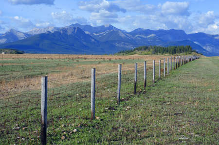 muz: Field with mountain range in background