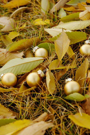 Golden balls among fallen leaves Stock Photo