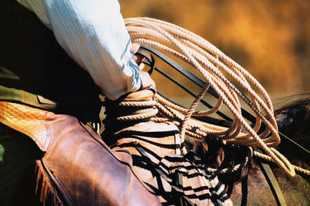 carson ganci: Cowboy with rope Stock Photo