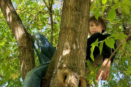 나무에있는 자식 스톡 콘텐츠