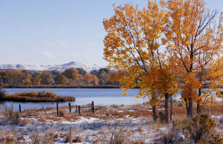 dean lake: Autumn tree by a river Stock Photo