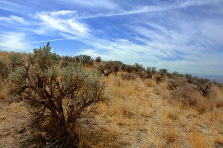 A barren land Stock Photo