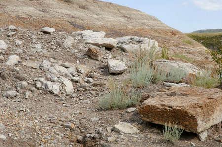 A rocky slope