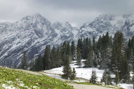 Snow covering alpine landscape Stock Photo - 5686328