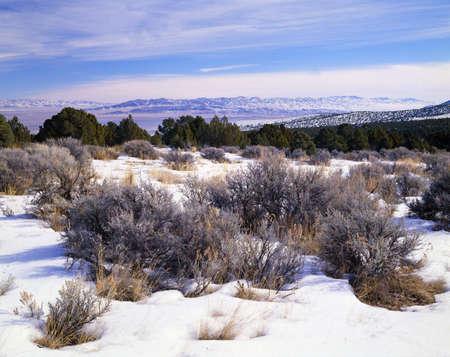 A high desert winter landscape, Great Basin National Park Stock Photo - 6216303
