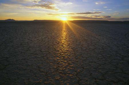 natural selection: Sunrise over Alvord Desert