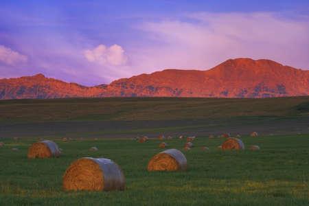 carson ganci: Sunrise in the foothills