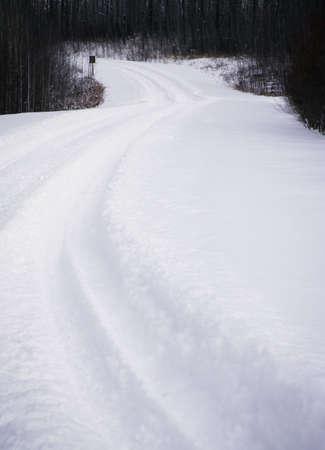 Snowy path Фото со стока
