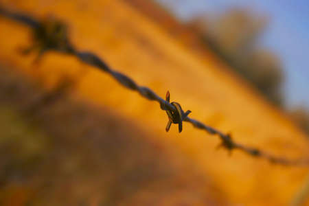 Close up of barbed wire fence Stock Photo - 5682327
