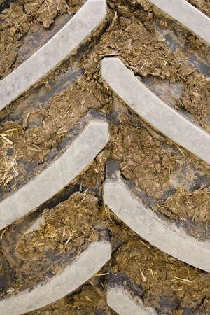 darren greenwood: Dirt in tire tread