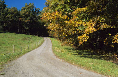 Scenic country road photo