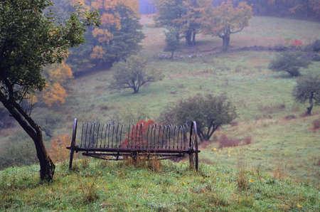 Old Hay Rake photo