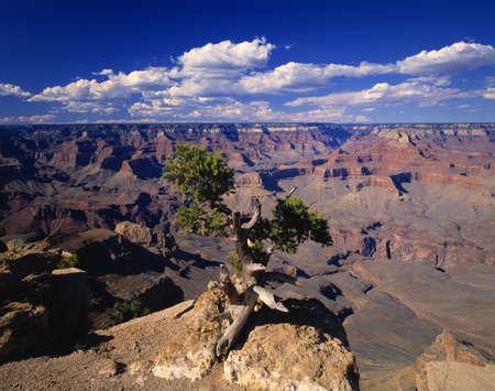 A scenic canyon Stock Photo - 5713541