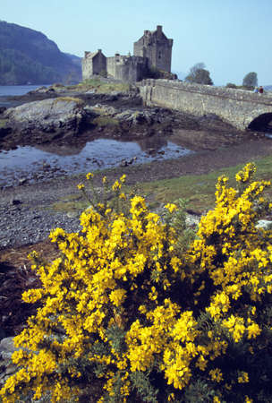 lochs: Scottish Castle