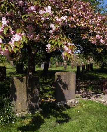 Co Laois, Rosenallis, 1700 Quaker Graveyard, oldest in Ireland Stock Photo - 7188040