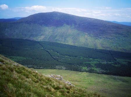 Forestry on the Nephin Beg Mountain range, Co Mayo, Ireland Фото со стока - 7188742