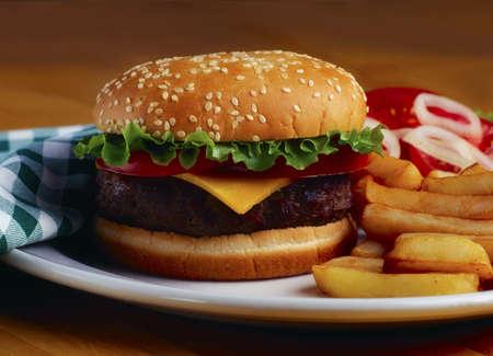 closeups: Cheeseburger and french fries