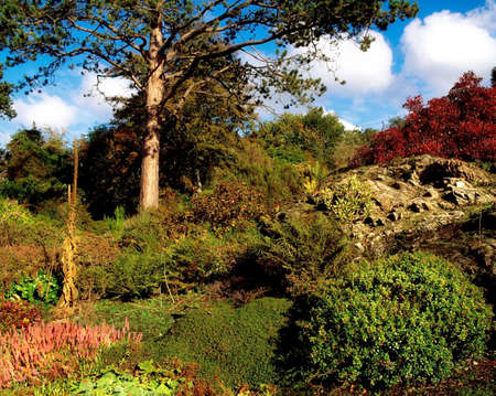 Rowallane Garden, Co Down, Ireland; Mixed planting in the rock garden during Autumn Stock Photo - 7328888