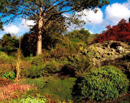 statuary garden: Rowallane Garden, Co Down, Ireland; Mixed planting in the rock garden during Autumn
