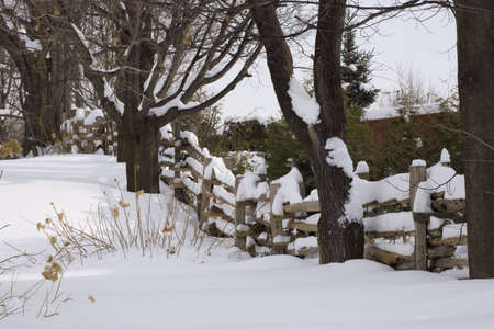 fence: Wooden fence covered in snow