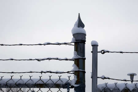 Chicken wire fence and barbed wire covered in snow photo