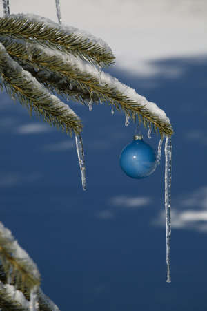 Pine tree covered in snow and icicles, with blue Christmas decoration photo