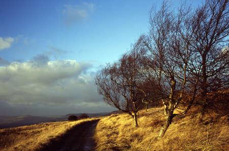 연합 왕국: Derbyshire, England, United Kingdom; Path through a national park 스톡 사진