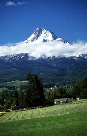 mount hood: Oregon, USA; Mount Hood and low lying cloud Stock Photo