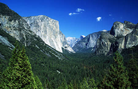 Yosemite National Park, Sierra Nevada, California, USA; Forest and mountains 스톡 콘텐츠