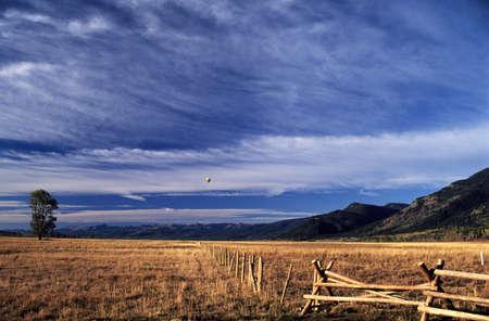 Wyoming, USA; Hot air balloon flying across the Grand Tetons Stock Photo - 7328872