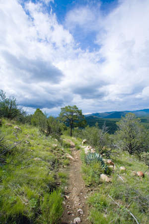 raniszewski: New Mexico, USA; Hiking trail in the Gila Mountains Stock Photo