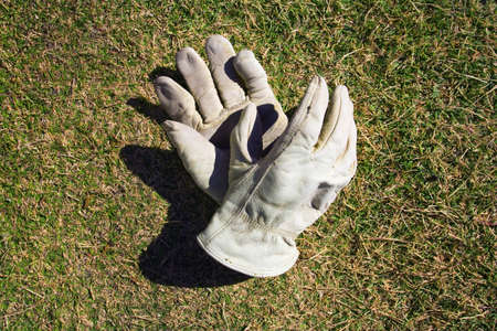 raniszewski: Work gloves tossed on a lawn