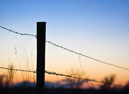 barbed wire fence: Silhouette of barbed wire fence