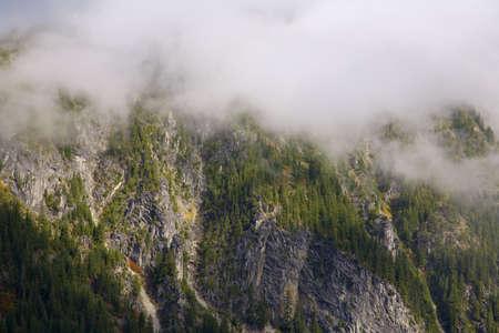 Stevens Pass, Mt. Rainier National Park, Washington, USA Stock Photo - 7209003