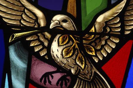 vetrate colorate: Vetrata in Sinagoga